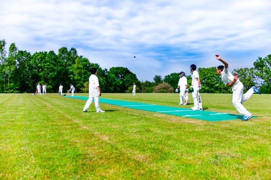 Cricket on a Flicx Pitch